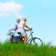 Ikigaia - Medicina Anti-aging